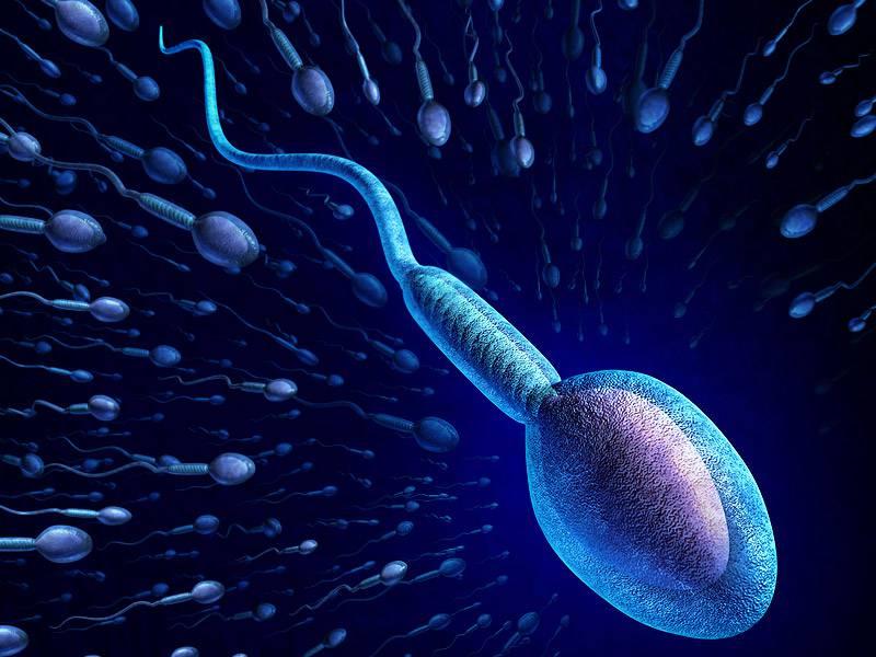 چگونه آزمایش اسپرم بدهیم